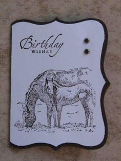 Birthday horses