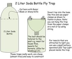 As far as possible, this post will concentrate on pest control tips that would assist keep away as much pests as you can. Some of the advises provided here will deal on specific pests but some may … House Fly Traps, Homemade Fly Traps, Bug Trap, Best Chicken Coop, Chicken Feed, Japanese Beetles, Fruit Flies, Soda Bottles, Water Bottles