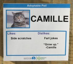 A picture is worth a thousand words, but you also want to learn a little about a cat's personality. Knowing their likes and dislikes will help.These profiles are from a series of cat labels from Obvious Plant. See all ten of them here. The cats are all real, and available for adoption through the Santé D'Or Foundation in Los Angeles. -via Metafilter...