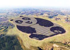 """El primer proyecto de """"Panda Green Energy"""" es parte de un acuerdo de cooperación con el programa de desarrollo de las Naciones Unidas (PNUD). Un acuerdo entre varios países para combatir el cambio climático. Es la primera fase del proyecto inici"""