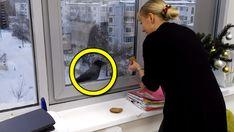 När kråkan knackade på fönstret trodde hon att den ville ha mat, men där hade hon fel. Kråkor gillar allt som g...