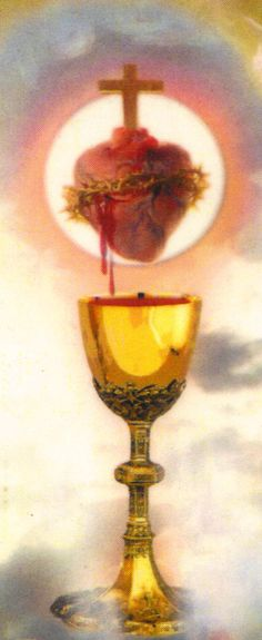 Wine is a symbol of Eucharist because just like the bread it was shared at the passover meal between Jesus and his Disciples. The wine is given to us as the blood of Jesus, wine also symbolizes joy. Catholic Prayers, Catholic Art, Catholic Saints, Roman Catholic, Religious Images, Religious Art, Jesus E Maria, Jesus Christus, Les Religions