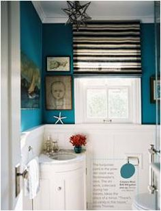 turquoise. love this. want the border shelving as well as the planks below.