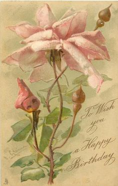 TO WISH YOU A HAPPY BIRTHDAY  pink roses 400×700