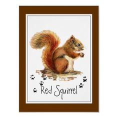 Original Watercolor Red Squirrel Tracks Animal by countrymousestudio