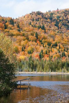 Carleton, Gaspésie, Québec, Canada - a high tourist area - nature at it's best. web source - MReno Canada Ontario, O Canada, Montreal Quebec, Quebec City, Ottawa, Torre Cn, Windsor London, Toronto, Northwest Territories