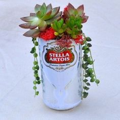 Portative Soda Can Planters: The Irresistible Power Of Recycling - Unique Balcony & Garden Decoration and Easy DIY Ideas Beer Centerpieces, Centerpiece Rentals, Beer Decorations, Succulent Centerpieces, Succulent Arrangements, Craft Beer Shop, Beer Can Art, Cactus, Oktoberfest Party