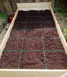 ich pflanze nicht in reihen sondern in quadrate immer wenn ein quadrat abgeerntet ist wird es. Black Bedroom Furniture Sets. Home Design Ideas