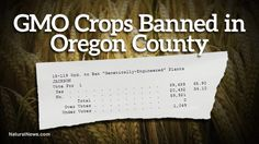 ANOTHER COUNTY STEPS UP!!  Genetically engineered crops banned in Jackson County, Oregon in landslide victory against GMOs