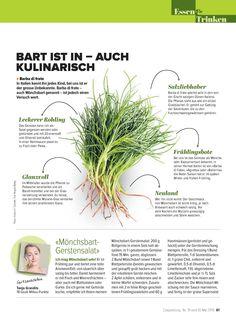 COOPZEITUNG Herbs, Sea Spray, Italy, Plants, Herb, Medicinal Plants