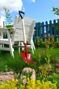 Bikarbonat i trädgården   Hemmets Homesteading, Garden Tools, Orlando, Farming, Grid, Plants, Gardening, Outdoor, Life