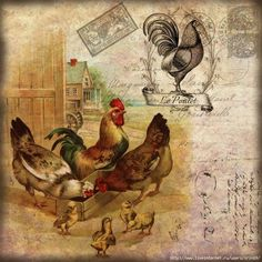 Chickens - farmyard Chicken Painting, Chicken Art, Decoupage Vintage, Decoupage Paper, Chicken Pictures, Kitchen Artwork, Foto Transfer, Doodle Doo, Chickens And Roosters