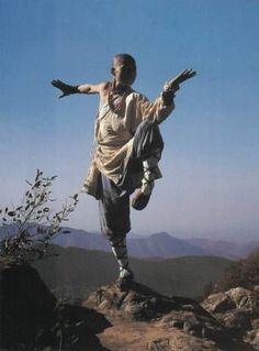 Guys likes shaolin dudes Kung Fu Martial Arts, Chinese Martial Arts, Art Poses, Drawing Poses, Character Poses, Character Design, Shaolin Kung Fu, Fighting Poses, Human Poses