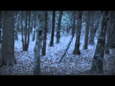 THE KILLING WOODS by Lucy Christopher- if you like horror books you would want to read this book by just watching the trailer. It leaves you off at some points and it makes you want to read it so you know what is happening.