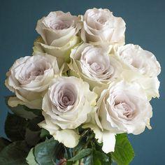 Popular Champagne Rose Varieties: Quicksand, Sahara, Early Grey, Sahara Sensation, and Menta Bridal Bouquet Fall, Blush Bouquet, Bouquet Wedding, Rose Wedding, Wedding Flowers, Early Grey, Rose Varieties, Floral Event Design, Bonito