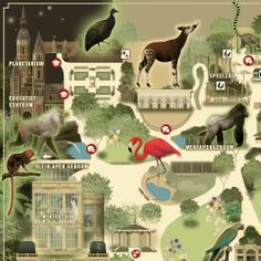 Antwerp Zoo on Behance