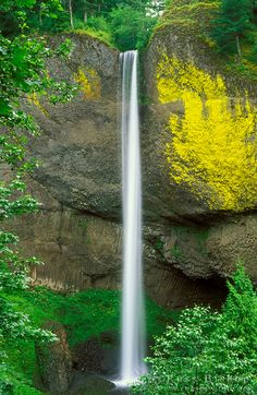 Latourell Falls, Columbia River Gorge National Scenic Area, Oregon USA - Copyright © Russ Bishop