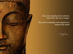 Als je een waardig mens ontmoet, tracht hem dan na te volgen. Als je een onwaardig mens tegenkomt, beproef dan jezelf! / Confucius