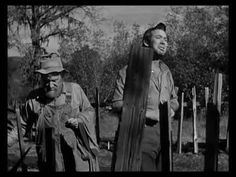 Starring : Charlie Grapewin , Gene Tierney Shiftless Jeeter Lester (played by:Charlie Grapewin of Grapes of Wrath and The Good Earth) and his family of hillb. Cult Movies, New Movies, Movies To Watch, Movies Online, Movie Gifs, Movie Tv, Elizabeth Patterson, Dana Andrews
