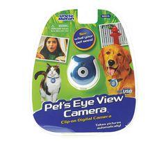 Pet view camera