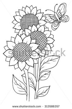 Find Sunflowers Butterfly Coloring stock images in HD and millions of other royalty-free stock photos, illustrations and vectors in the Shutterstock collection. Thousands of new, high-quality pictures added every day.