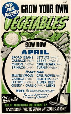 Grown your own vegetables poster