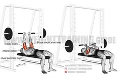 Best chest exercises for lower and upper chest | Weight Training Guide Best Chest Workout, Chest Workouts, Gym Workouts, Chest Exercises, Dumbbell Fly, Smith Machine, Weight Training Workouts, Workout Guide, Body Weight