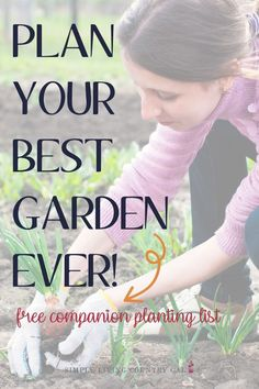 Vegetable Companion Planting Chart PDF. How to plant a better garden. Backyard planting tips. Companion planting guide. Step by step garden planting tips. Beginner gardening tips for what to plant where. Organic gardening guide use plants to keep bugs and diseases away. #organicgardening #companionplanting #backyardgardening #gardening Hot Tub Garden, Big Garden, Garden Soil, Vegetable Garden, Garden Art, Garden Ideas, Planting Vegetables, Growing Vegetables, Gardening For Beginners