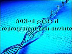 """OPINII PERSONALE: ADN-ul uman, este un """"internet biologic""""! Cercetătorii ruşi au dovedit că ADN-ul poate fi reprogramat prin cuvinte"""