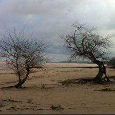 Playa uruguaya sobre Rio de la Plata