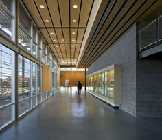 Gallery of ASU Polytechnic Campus / Lake|Flato Architects + RSP Architects - 4