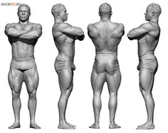 128 Best 3d scan images in 2018 | Anatomy reference, Zbrush