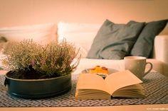 Herbstdeko Backform bepflanzt mit Heidekraut und Silberkraut
