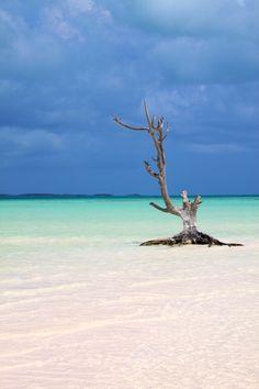 Next stop...harbour island bahamas