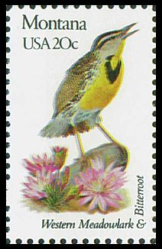 Pictures the state bird and flower – the Western Meadowlark and Bitterroot.