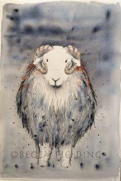 Herdwick Tup www.beccafielding.com Watercolour Painting, Becca, Pet Portraits, Sheep, Fields, Moose Art, Colours, Animals, Image