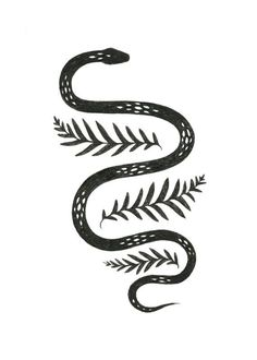 Image result for snake illustration
