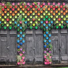 A rainbow of potted plants greets you at this door in Moscow, Russia. A rainbow of potted plants Garden Art, Garden Design, Garden Tips, Rustic Doors, Rainbow Wall, Rainbow House, Doorway, Cool Ideas, Windows And Doors