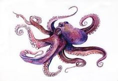 Image result for octopus illustration
