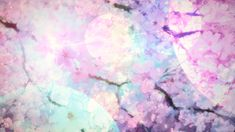 Gif, animation, cherry blossom, scenery
