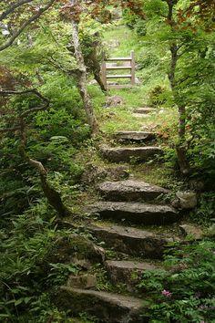 garden path in Kyoto by Reynaud Glenat – Garden Paths Landscape Design, Garden Design, Landscape Architecture, Garden Stairs, Woodland Garden, Woodland Wedding, Natural Garden, Dream Garden, Pathways