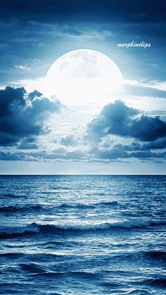 Moon over the ocean [gif animated] The Ocean, Ocean Gif, Moon Over Water, Gif Animated Images, Classic Sailing, Gods Creation, Landscape Pictures, Art Images, Moonlight