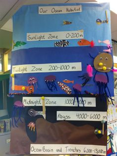 ocean levels- work together on large one kids will love this