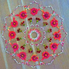 Mandala en fleurs