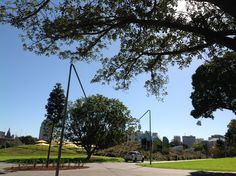 Prince Alfred Park in Sydney