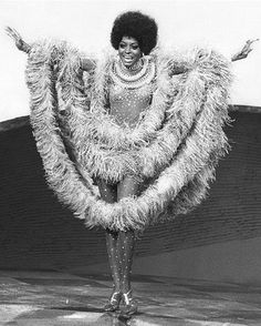 Google Image Result for http://makeupbeat.com/blog/wp-content/uploads/2009/02/hairstyle-1970-diana-ross-1.jpg