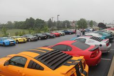 Look at all these #Mustangs in the CJ lot! - Pony Trails 2013