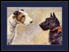 English-Picture-Print-Scottish-Wire-Fox-Terrier-Dog-Art-Poster