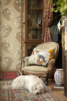 Love the pops of colour and the cute doggy. Au Naturel doesn't have to be boring beige