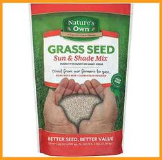 Mountain View Seeds Natures Own Sun & Shade Mix Grass Seed, Grass Seed For Shade, Best Grass Seed, Grass Seed Types, Grow Grass Fast, Growing Grass, Planting Grass Seed, Strawberry Seed, Wheat Grass